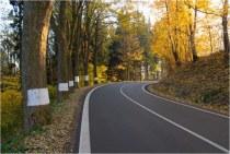 Vlčkovice - nová silnice r
